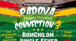 sabato 11 gennaio 2014: Padova Reggae Dancehall Connection 3 @ CSO Pedro, Padova